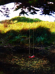 The Red Swing (Steve Taylor (Photography)) Tags: swing rope digitalart contrast brown black green red yellow newzealand nz southisland canterbury christchurch dunes grass branch leaves texture bottlelakeforest