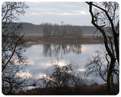 River Elbe Morning Reflections (nickyt739) Tags: flickrsbest fx river elbe winter morning germany nikon dslr d750 landscape reflections sunrise clouds fog mist