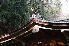 SDQ_1091 (koyaman3422) Tags: 京都 kyoto sigma sdquattro 1770mm 貴船神社