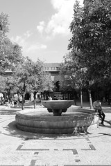 Catedral de Sevilla # 11 Patio de los Naranjos (just.Luc) Tags: andalusië andalucía andalusien andalousie andalusia sevilla seville séville siviglia spain spanje espagne españa spanien bn nb zw monochroom monotone monochrome bw fountain fontein fuente fontaine trees bomen arbres bäume árbol