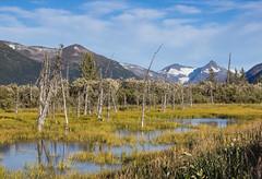 Mountains and water (Oleg S .) Tags: alaska mountains usa nature flickr marsh