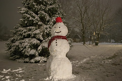 Oatmeal The Snow Man (ArtofScholle) Tags: snow 2019 january indiana usa weather cincinnati dearborn life winter cold fun snowman man red scarf hat bucket night hdr pine tree buttons smile phes oatmeal