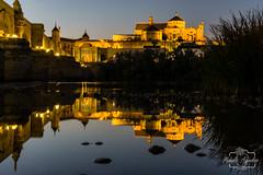 La noche siempre tiene algo que decir, escucha su silencio... Buenas noches  #catedral #cathedral #mezquita #mosque #nocturna #night #río #river #ciudad #city #córdoba #andalucía #españa #spain #turismospain #paisaje #landscape #reflejos #reflexes #photog (Manuela Aguadero PHOTOGRAPHY) Tags: spain mosque sonyα6000 mezquita manuelaaguaderophotography city sonyalpha sonyimages catedral reflejos españa reflexes sony6000 sonyalphasclub río photographer nocturna paisaje cathedral córdoba night turismospain andalucía sonya6000 sonystas ciudad river sonyalpha6000 landscape photography