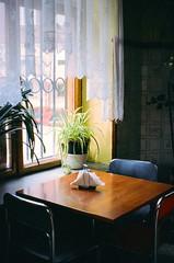 Milk Bar in Warsaw (Hilari Flynn) Tags: warsaw film analog 35mm poland europe minoltax700 trip kodakfilm analogue carrete filmisnotdead filmisalive lovefilm war varsovia polonia mariecurie history