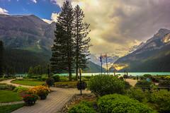 Lake Louise, Alberta (howard1916 - My Personal 'Explore') Tags: lakelouise lake alberta banffnationalpark canada landscape tree mountain victoriaglacier