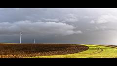 Plaine picarde II (Alexandre LAVIGNE) Tags: pentaxhddfa2470mmf28edsdmwr pentaxk3 format2351 picardie plaine ambiance champs ciel crête eoliennes k3 lumière nature nuages paysage lehaucourt picardiehautsdefrance