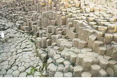 Giant's Causeway (Caroline Kutchka Folger) Tags: geology geometry wondersofnature nature ireland roadtrip giantscauseway countyantrim lava