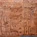 TEMPLO DE LUXOR LUXOR EGIPTO 5484 14-8-2018