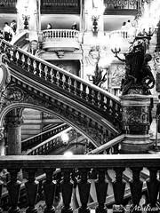 180810-078 Opéra Garnier (2018 trip) (clamato39) Tags: opéragarnier stairs escaliers inside intérieur interior paris france europe blackandwhite bw noiretblanc monochrome