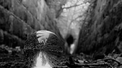 """"""" Beer Street and Gin Lane """" (hope2029) Tags: crystal ball monochrome ginnel abstract focus walls leaves leeds west yorkshire"""