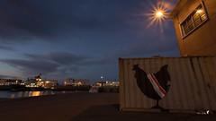 Patriote... (Patrice Le Roux) Tags: finistère bzh brest bretagne port bateau mer