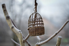 Cage (Alexandra Horvath) Tags: outdoor winter cage hungary nikon nikond3200 object depthoffield yongnuo garden
