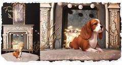 Foxwood @ Tannenbaum (Dani @ Birdy/Foxes/Alchemy) Tags: screenshot sl secondlife tannenbaum foxwood nina helix mesh home decor pet