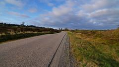 Bumpy road (Steenjep) Tags: landskab landscape field himmel sky road vej grøft hegn hede heath tree træ cloud grus