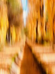 La acequia (Anxo Becerra) Tags: acequia lagunadeduero invierno paseo seco