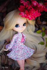 Happy Birthday, Sofia!! (♪Bell♫) Tags: pullip romantic alice pink sofia rosemberg groove doll happy birthday