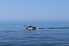 Kutter auf dem Meer (marlon.freiberger) Tags: blau boot fischer fischerboot korfu meer ozean sea urlaub wasser