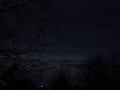 Night Has Fallen. (dccradio) Tags: lumberton nc northcarolina robesoncounty outdoor outdoors outside nature natural tree sky trees treebranch branch branches treebranches january winter evening goodevening saturday saturdayevening kodak easyshare dx4530 night lights