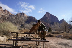_A7R7779 (KevinXHan) Tags: zions national park nature hiking hike outdoors utah dog golden retriever vacation travel parus trail