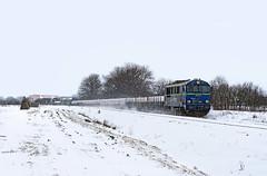 SU46-017 (Mariusz Sychowicz) Tags: pkp pkpcargo cargo polskakolej suka train su46 hcp hcp303d diesellok madeinpoland polishtrain lokomowtywa railway railwayphotography