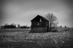 20190207.Old Barn In The Field (Paul Thibodeau) Tags: photooftheday essex fujifilmx100f landscape blackandwhite barn