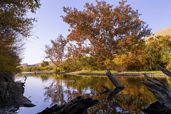 Fall colors (Vic Fine Art Photography) Tags: falls clouds canon canon1dx colors coast california beautiful backlight nature national natural mountains morning lake landscape park outdoor orange river wild usa yellow travel trees tree rural reflection rays explore evening water waterexplore wow