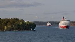 Viking Line territory (HansPermana) Tags: stockholm sweden schweden sverige sea cruise ship ferry transportation eu europe europa nordic scandinavia skandinavien northeurope nordeuropa seatransportation vikingline