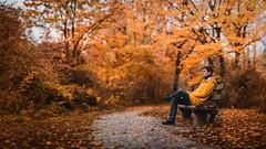 Autumn in Stuttgart (Bastian.K) Tags: brenizerautumnraincoatrainrainjacketyelloworangeherbststuttgartmaxeythseelakeblätterleaveleavesbokehramabokehpanoramapanorama brenizer raincoat yellow gelb gelbe jacke regenjacke porträt wald herbst autumn bokehpanorama panorama panoramic