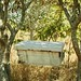 EIF supporting Zambia's honey industry