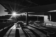 Sunrise at the Lake - 1 (HardDriveKC) Tags: art lightroom adobe dslr digitalslr photograph camera nikon digital missouri photo photography states unitedstatesofamerica united america unitedstates jacksoncounty bw blackwhite blackandwhite white black d3400 building morning architecture sun sunrise view 28mm 28 nikond3400