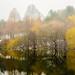 Kurpark Oberlaa, Swan Lake