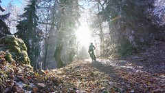 Sun's Low (29in.CH) Tags: fall autumn fatbike ride 18112018 sun trail forest