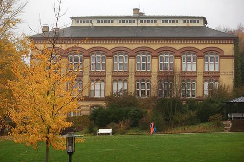 "Alte Universitätsbibliothek (11) • <a style=""font-size:0.8em;"" href=""http://www.flickr.com/photos/69570948@N04/45053921054/"" target=""_blank"">Auf Flickr ansehen</a>"