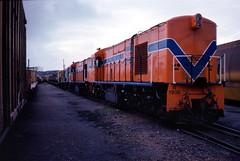 3805 R1905 R1903 F45 stabled Bunbury Yard 18 June 1983 (RailWA) Tags: railwa philmelling westrail 1983 bunbury r1905 r1903 f45