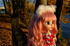 Dusk (MlleChantilly) Tags: pullip doll dolls dollphotography dollsphotography obitsu nature river lake water autumn groove mymelody mymelody2017 mymelodyhennako hellokitty sanrio