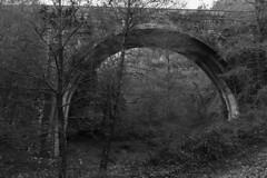 Parco Regionale dei Monti Picentini (fabio.raimo) Tags: ponte fiume natura monochrome biancoenero bn irpinia sentierodelleacque campania montipicentini