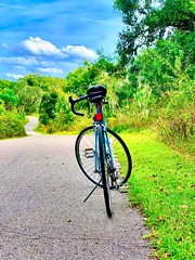 The Journey Home (stonelaveaux) Tags: green blue clermont raleighbikes exercise workout bikeflorida lakecounty southlaketrail florida path trail journey biking cyclist cycling cyclinglife