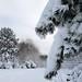 Wien, Es wurde Winter