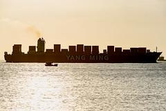 Container Vessel (NguyenMarcus) Tags: aasia sunset hdr vietnam nature worldtrekker vungtau bàrịa–vũngtàu vn