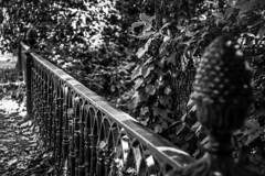 Vestiges of the past (Jose Rahona) Tags: barandilla puente valla forjado ironwork parque park jardin garden hojas leaves arboles trees blancoynegro blackandwhite monochrome