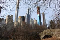 New York. January 2019 (stuartjames5) Tags: new york centralpark