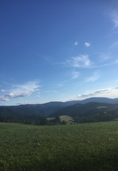 Running around St Peter (Black Forest, Baden, Germany) (Loeffle) Tags: 082018 germany allemagne deutschland baden blackforest schwarzwald foretnoire running laufen stpeter