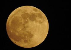 Evening Moon (Poppy1385) Tags: moon lunar