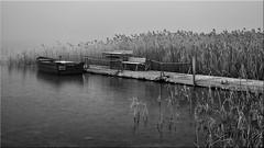 Winter mood at the Lake (Ostseetroll) Tags: deu deutschland geo:lat=5403900245 geo:lon=1069313383 geotagged pönitzamsee scharbeutz schleswigholstein winterstimmung pönitzersee boot wintermood boat lake olympus em5markii blackwhite schwarzweiss