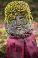 Green Hairy Jizo, Sanzenin, Ohara (DanÅke Carlsson) Tags: japan japanese sanzenin ohara kyoto jizo moss mini statue stone green red hair traditional religion