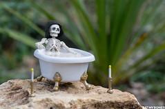 Milk bath for Cleopatra (EatMyBones) Tags: cleopatra figurine miniature poseskeleton rement skeleton toy toyphotography