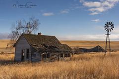 Davenport Homestead (NikonDigifan) Tags: abandoned abandonedhouse rural farmhouse windmill washington old farm rundown dilapidated rustic autumn fall nikond750 niksoftware nikon28300 colorefexpro mikegassphotography