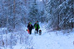 537A6623 (sullivaniv) Tags: alaska eagle river biggs bridge hiking group