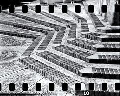 Lomography (Black and White Fine Art) Tags: lomography lomo holga holga120n 35mmadapter toycamera camaradejuguete plasticcamera camaradeplastico sanjuan oldsanjuan viejosanjuan puertorico bn bw