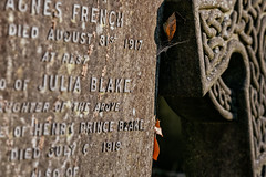 P-00494-No-122_rt_1 (Steve Lippitt) Tags: 01000000 01015000 architecture art celticcross graves highgateeastcemetery architectural architecturaldetail artistry building burialground cemeteries cemetery cross edifice edifices fineart gravestone landscape landscaping manmadeobjets object objects placeofworship religiousbuilding religiousobjects sculpture statuary statue stonesculpture stonecarvings stonework structures thing things tombstone london england unitedkingdom camera:make=fujifilm geo:country=unitedkingdom exif:focallength=804mm geo:state=england exif:isospeed=200 geo:location=highgatecemeteryeastswainslnhighgaten66pj exif:model=xh1 exif:lens=xf50140mmf28rlmoiswr geo:lon=014496666666667 camera:model=xh1 exif:make=fujifilm geo:lat=515646 geo:city=london exif:aperture=ƒ56
